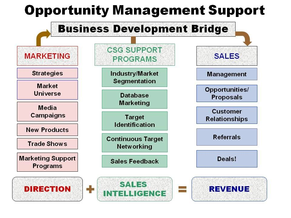business strategy development application bissonette